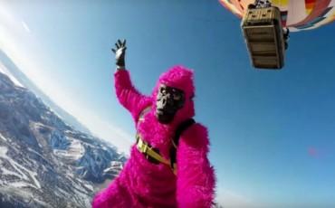 pink gorilla gopro